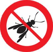 Bees Wasps