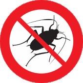 Cockroache Pest Control